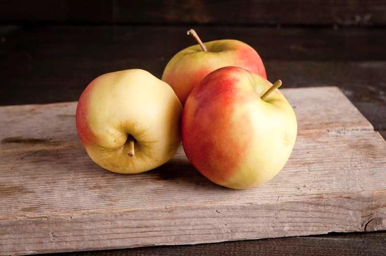 Elstar appel, klasse 1, per stuk